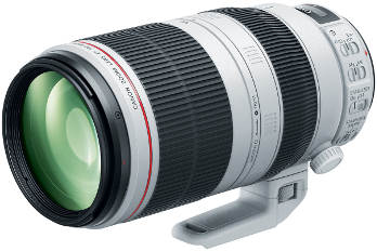 Canon 100-400mm f/4.5-5.6 L USM IS II image